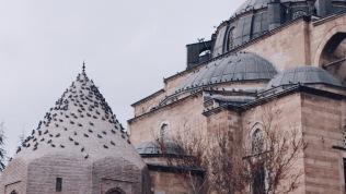 Konya in the morning, flock of pigeons sleep on doom's roof